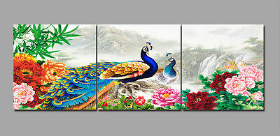 Abstract Wall Art Home Decor Painting on Canvas NO framed Peacock Peony 3pcs 266