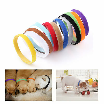 12 Colors Adjustable ID Collars Bands Puppy Kitten for Newborn Pet Magic Tape