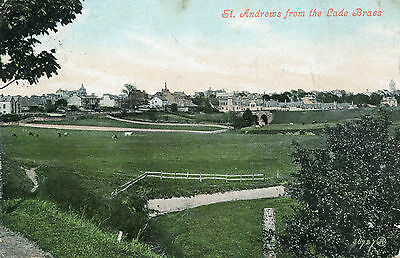 St.Andrews - from Lades Braes  postally used 1906