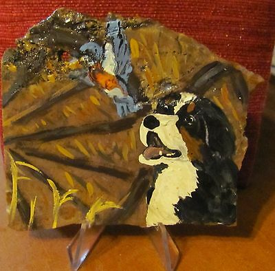 Bernese Mountain Dog facinated by bluebird hand painted on fossil slice