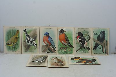 9 Vintage Arm & Hammer Baking Soda Bird Cards