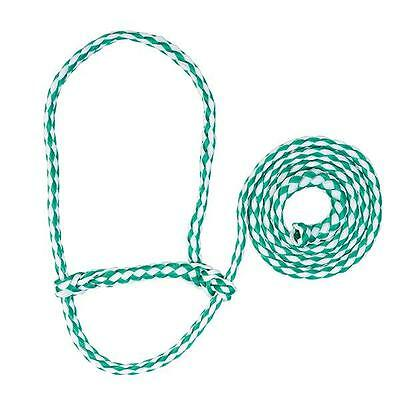 Weaver Leather Poly Rope Sheep Halter, Green/White Average