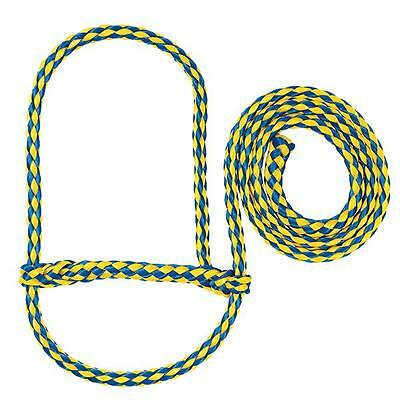 Weaver Leather Poly Rope Sheep Halter Blue/Yellow Average