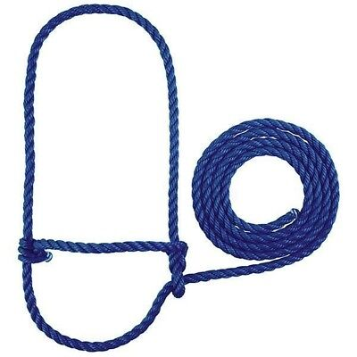 Weaver Calf Halter with 7 Foot Lead Rope Poly Rope Calf (Sheep/Goat) Size Blue
