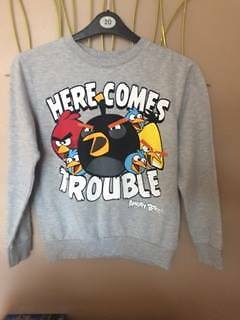 Angry Birds Jumper Age 12-13 - Excellent Condition