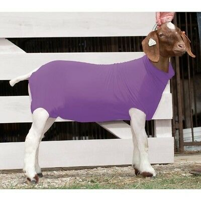 Weaver Nylon/Spandex Blend Goat Tube Stretches to Fit, Purple, Small