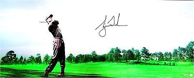 """Tiger Woods Hand Signed Autograph 18""""x44"""" Photo Gorgeous Sweet Swing UDA XX/100"""
