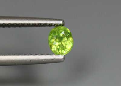 0.49 Cts_Stunning Very Rare Collection_100 % Natural Demantoid Garnet - Russia