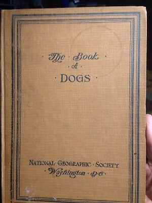 The Book of Dogs by National Geographic Society 1919 96 Pages
