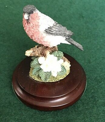 Country Artists- Bullfinch Mini