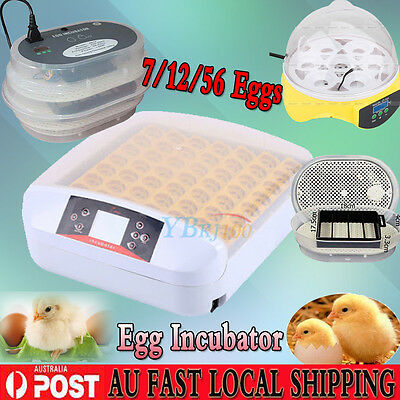 Fully Automatic Display 7/12/56 Eggs Chicken Duck Poultry Hatcher Duck Incubator