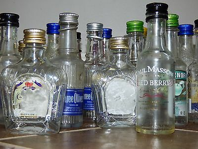 *BEST VALUE* Dozen Lot of 50ml Mini Empty Plastic Alcohol Liquor Shots Bottles