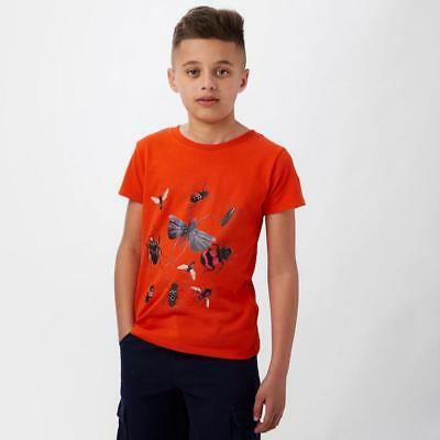 Red Peter Storm Boys' Bug T-Shirt Outdoor Clothing One Colour