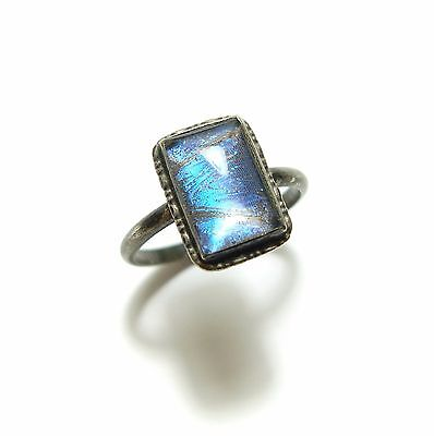 Stunning Old Vintage 1930S Silver & Blue Butterfly Wing Panel Band Ring (B7)