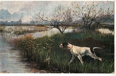 F85. Vintage Cecami Italian Postcard.  Pointer Dog on the Marshes. By Notfini.