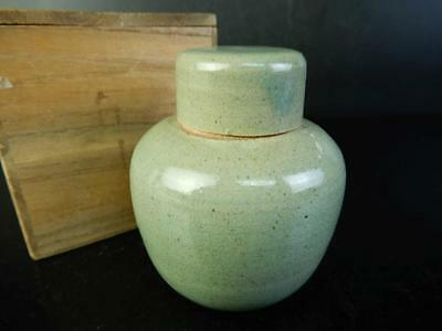 H1594: Japanese Nishio-ware Celadon TEA CADDY Chaire Container,auto w/box