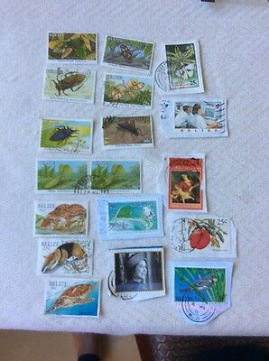 Belize Stamps Insects and Others - Used
