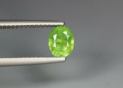 0.79 Cts_Stunning Very Rare Collection_100 % Natural Demantoid Garnet - Russia