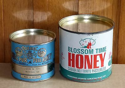 2 vintage Canadian graphic honey tin cans Blossom Time & 1924 Quebec FREE SHIP!