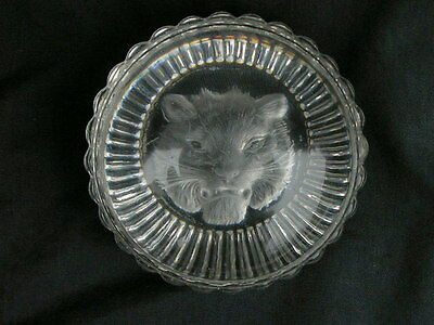 "Antique Victorian French Baccarat Intaglio Glass Paperweight ""tiger"""