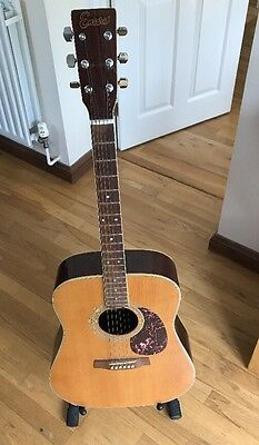 Encore Acoustic Guitar With stand