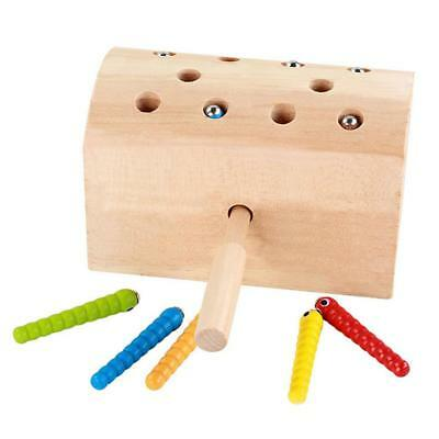 Wooden Catch Insects Game Magnetic Toy Developing Kids Hand-eye Coordination