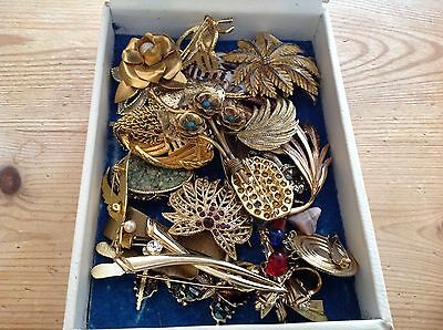 VINTAGE/MODERN Costume Jewellery 27 Brooches Incl. 2 HOLLYWOOD & Other Brands
