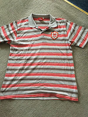 Cardiff City Men's Polo Shirt (XXL)
