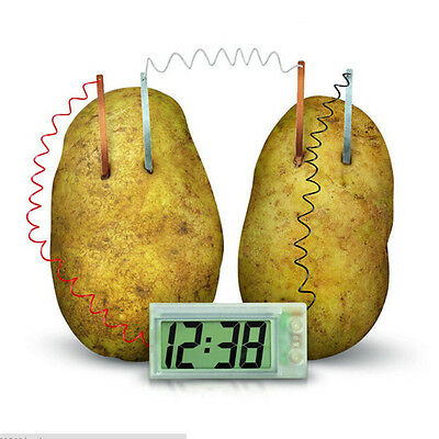 Potato Clock Novel Green Science Project Experiment Kit Lab Home School Toy GVUS