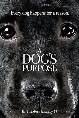 A Dogs Purpose Movie A1 plus 24x36 inches poster print version 3