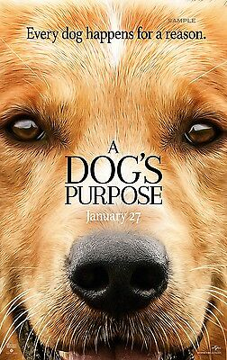 A Dogs Purpose Movie A1 plus 24x36 inches poster print
