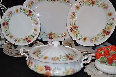 Vintage Bone China Floral Dinner Service - Royal Standard Side & Dinner Plates