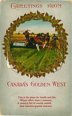 CANADA Golden West Rare Vintage Multiview Harvesting PC 1913