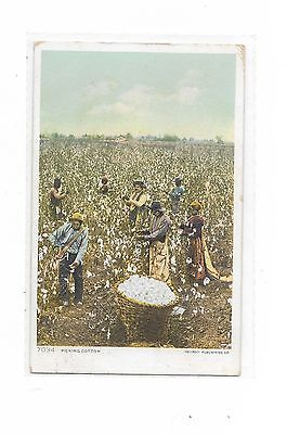 """7034 """"Picking Cotton"""" vintage 1919 to Camden, NY"""