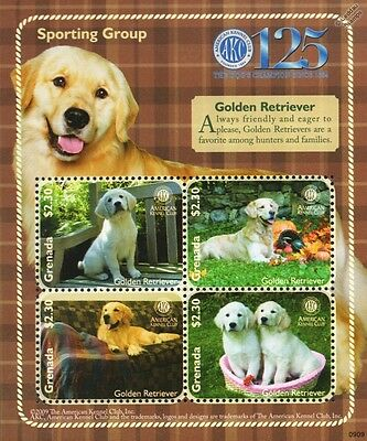 Golden Retriever Dog Stamp Sheet (American Kennel Club Sporting Group) Dominica