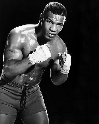Mike Tyson 17 (Boxing) Photo Prints And Mugs