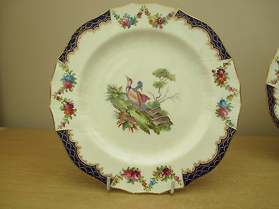 Two vintage Cauldon plates