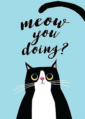 Home & Dry 100% Cotton Tea Towel - Meow You Doing?