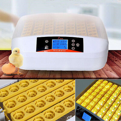 Automatic Turning 32 Egg Incubator Poultry Chicken Hatcher Temperature Hot