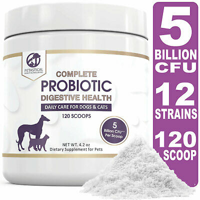 Petastical Probiotics for Dogs and Cats with 5 BILLION CFU - Max Strength