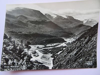 Real Photo Postcard Norway, Norge Bouerdalen In Good Condition