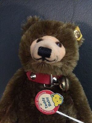Steiff Baby Dicky Reproduction Dicky Bear Brown Mint With Tag
