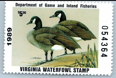 Virginia Duck Stamp 1989. MNH. VF.