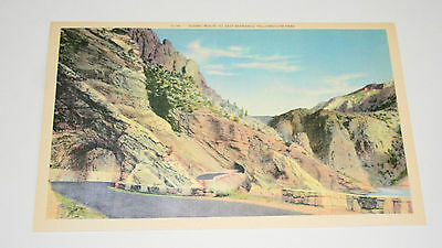 2 Yellowstone National Park Entrance G-141 Linen 1940s Giant Post Card NOS New