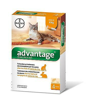 Advantage 40 Chat Lapin 0 4 kg pipettes antiparasitaires