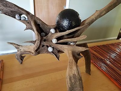 """Cannon Ball Display """"After the Battle"""" 1695 HMS Winchester shipwreck artifact"""