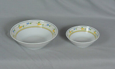 Mitterteich Bavaria Germany Vegetable Bowl & Soup Bowl