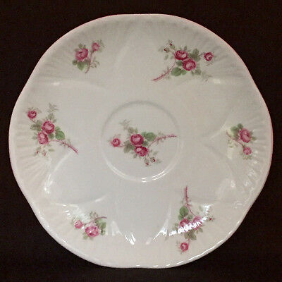 Shelley Bridal Rose Bone China Orphan Saucer Only 13545 Dainty Shape C.1938-66