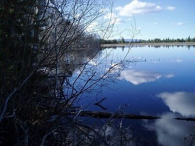 """Private Reservoir & Homestead For Sale, Southern Oregon """"10 Day Auction"""""""
