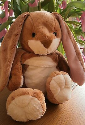 "10"" Snuggle Bunny Rabbit Wheat Bag  -Super Soft -Gift Idea - With Tags"